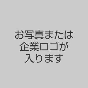 example_logo_img01